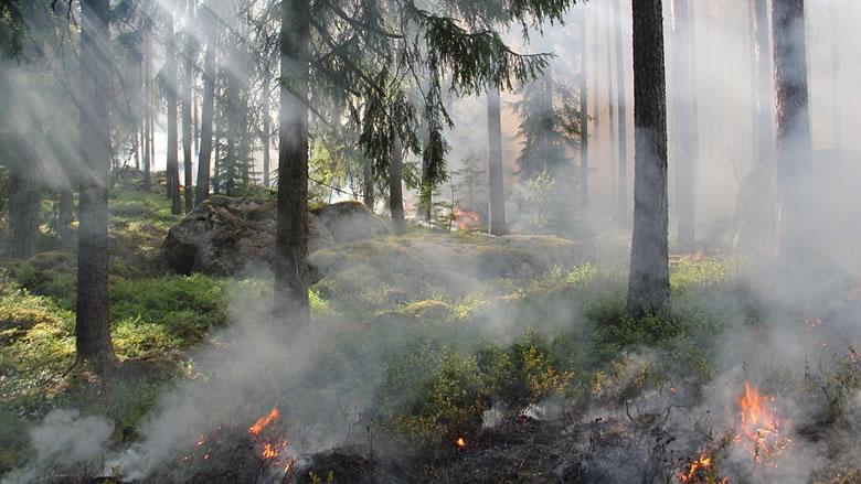 小さな火が大火災に発展する