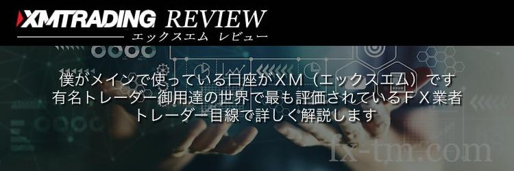 XM レビュー